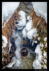 MOUNTAINS & SNOW '16 (EnzoLopardoPictures) Tags: longexposure schnee winter snow mountains water wasser streetphotography berge steine bach handheld brook swissalps stmoritz langebelichtung schweizeralpen enzolopardo