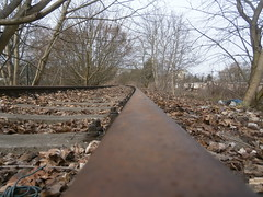 Reste Gterstrecke Teltow 2016 - 17 (Abandoned-Stillgelegt Berlin) Tags: railroad trees tree abandoned train germany deutschland bush track tracks railway bushes bume brandenburg baum gleise busch ballast gleis bahnstrecke stillgelegt trackbed teltow bahndamm schotter schwellen bsche b landbrandenburg betonschwellen bahnbergnge holzschwellen betonschwelle holzschwelle altebahnstrecke gterstrecke stadtteltow ehemaligegterstrecke ehemaligebahnstrecke