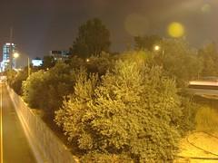 DSC00048 (Medium) (Andrey a.k.a. Pushkin) Tags: israel telaviv