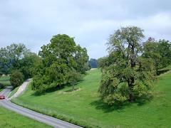 2007.08.027.SUISSE - WINTERTHUR - Chteau comtal de Hegi - vue depuis le donjon (alainmichot93) Tags: suisse schloss arbre 2007 winterthur hegi noyer chteaucomtal cantondezurich