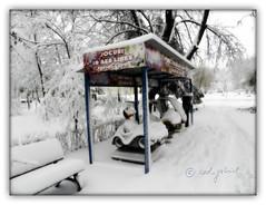 (cod_gabriel) Tags: winter snow smoke antonio bucharest bucuresti bukarest boekarest bucarest iarna zapada bucureti zpad iarn bazilescu bucareste pixlromatic parcbazilescu photogramio