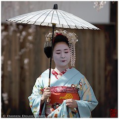 (Damien Douxchamps) Tags: japan umbrella temple kyoto central maiko geiko geisha   cherryblossom  kimono  kansai japon hanami     kinki  srping            honmanji