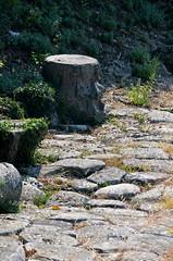 Decumanus Maximus [Aquileia - 11 August 2015] (Doc. Ing.) Tags: summer italy ruins roman unesco fvg ud friuli aquileia romanruins 2015 friuliveneziagiulia nordest decumanus