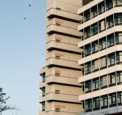 libert, egalit, solidarit alors revolution (maikdoerfert) Tags: streetart building tower art architecture facade germany nikon university message front libert revolution uni bremen d90 egalit solidarit unibremen mzh nikond90 universittbremen mehrzweckhochhaus