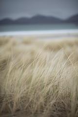 Harris Hills (McBruce) Tags: landscape scotland harris nikond800 march2016