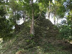 "Tikal <a style=""margin-left:10px; font-size:0.8em;"" href=""http://www.flickr.com/photos/127723101@N04/26240348455/"" target=""_blank"">@flickr</a>"