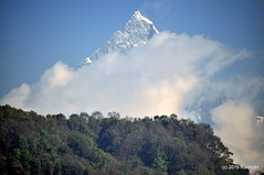DSC_0392 (rachidH) Tags: nepal sky mountain snow nature clouds peak paragliding everest pokhara annapurna himalayas himal machapuchare rachidh