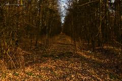 Woniki - death of the railway line (ChemiQ81) Tags: outdoor poland polska polish tags beta add polen polonia pologne 2016  polsko  puola plland lenkija pollando   poola poljska polija pholainn woniki lubliniecki     chemiq polanya lengyelorszgban