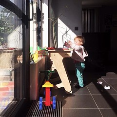 Barely walking and already standing while... (jaswigstandup) Tags: children fun woodwork healthy furniture working sunny woodworking plywood goodintentions uploaded:by=flickstagram liveactively instagram:photo=12016657411684730091744266691 standingrevolution