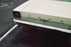 untitled (inafreeland) Tags: classic ford film car 35mm newjersey nj bumper jerseyshore oceancounty stafford manahawkin kodakgold200 canoneoselan7e
