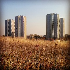 Postcard. (c)2015_t.t.a.b. - #greetings from #katowice... (Tomski TTABOGRAPHY) Tags: city architecture postcard meadow poland greetings katowice ano tomski ttab polandarchitecture uploaded:by=flickstagram instagram:venuename=katowice2cpoland instagram:venue=213156214 ttabography anoprojekt panatommedia instagram:photo=11161224263951994951484642177