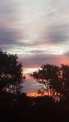 Dramatic Sunset (chuck92000) Tags: blue sunset orange tree clouds outside outdoors southaustralia