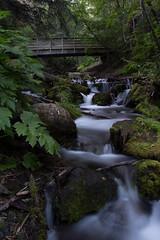 _MG_2578waterfall (punk1964) Tags: alaska evening waterfall turnagainarm