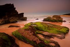 Redhead's Green Rocks (Paul Hollins) Tags: ocean seascape sunrise rocks australia redhead d750 newsouthwales aus watermovement nikon1635mmf4 nikond750