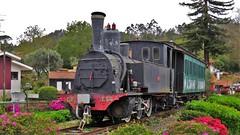 CP E54 (ruicmsilva) Tags: portugal jardim cp vapor comboio minho locomotiva darque santoinho e54 cpe54