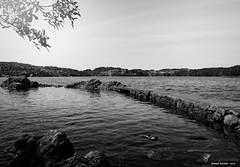 Vista del fiord des de la Casa Museu Edvard Grieg. Noruega (Josep Avils. Fotgraf. Imatges i pixels.) Tags: blackandwhite norway landscapes natura noruega bergen pau blancinegre paissatges