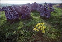 Ireland 1981 (3_04) (Hans Kerensky) Tags: road trip ireland 120 film megalithic cemetery august safety ii 1981 kodacolor sligo carrowmore 5035 plustek opticfilm