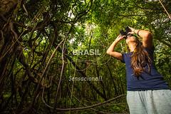 NO_Tefe0074 (Visit Brasil) Tags: travel brazil tourism nature horizontal brasil amazon rainforest natureza turismo norte amazonas detalhe ecoturismo ecotourism externa tef comgente diurna riosolimes reservamamirau visitbrasil