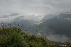 Misty Sapa (Vinchel) Tags: leica travel sky cloud mist mountain nature field landscape outdoor hill north vietnam cai mountainside q grassland lao province sapa