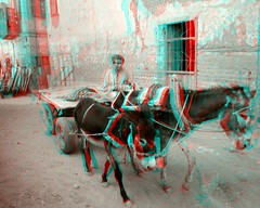 09_stereo_bw_PC280510 (said.bustany) Tags: 3d anaglyph dezember ägypten 2014 esna rotcyan