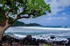 20160106 058 Maui Koki Beach (scottdm) Tags: travel usa hawaii us unitedstates january maui hana hi kokibeach roadtohana 2016