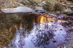 autumn water reflections ... (Roberto Defilippi) Tags: autumn water piemonte acqua ruscello autunno riflessi rodeos 42016 rorà robertodefilippi