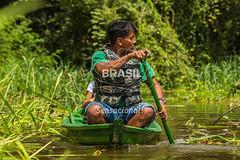 NO_Tefe0085 (Visit Brasil) Tags: travel brazil tourism nature horizontal brasil amazon rainforest retrato natureza turismo norte amazonas detalhe ecoturismo ecotourism externa nutico tef comgente diurna riosolimes reservamamirau visitbrasil
