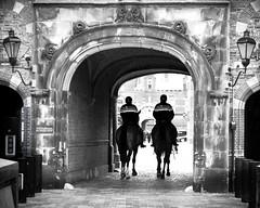 © Inge Hoogendoorn (ingehoogendoorn) Tags: horses blackandwhite horse monochrome zwartwit streetphotography police denhaag monochromatic blacknwhite buitenhof thehague paard paarden binnenhof politie policehorses straatfotografie politietepaard beredenpolitie