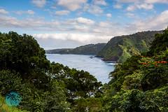 Maui Coastline - Road to Hana (brandon.vincent) Tags: ocean road green hawaii coast soft view pacific outdoor 9 maui filter hana jungle lee vista coastline grad gnd