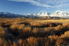 Just another Monday morning in the Owens Valley (Laura Zirino) Tags: california ca mountains landscape landscapes bishop owensvalley easternsierra owensriver dailynaturetnc16