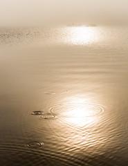 Carman reservoir April 2015-10.jpg (Phil Gordon 211) Tags: water fog landscape scotland other unitedkingdom gb renton artyfarty