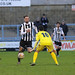 """Dorchester Town 2 v 1 Chesham SPL 30-1-2016-1499 • <a style=""""font-size:0.8em;"""" href=""""http://www.flickr.com/photos/134683636@N07/24726388035/"""" target=""""_blank"""">View on Flickr</a>"""