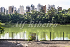 Alf Ribeiro 0179 0139 (Alf Ribeiro) Tags: park street city travel blue summer brazil sky people urban lake plant building tree green southamerica nature water beautiful skyline architecture season landscape town leaf cityscape view saopaulo outdoor walk brazilian metropolis build aclimacao