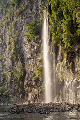 _DSC2785 (Jorge De Silva R) Tags: nature rio de la photo adventure venta caon chiapasmexico fotografiadenaturaleza