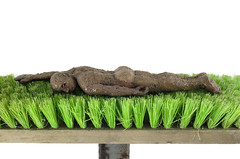 roof garden (NOonionplease) Tags: barcelona sculpture man nude arte escultura clay hombre figurative barro desnudo escoba reciclaje escultor cepillo figurativo refrectario