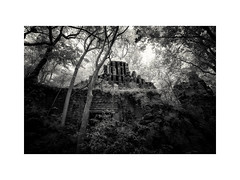 Xpuhil II from Below (Sandra Herber) Tags: mexico ruins maya mayan jungle infrared campeche