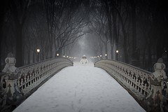 Be Still (ShutterJack) Tags: nyc travel bridge trees snow newyork storm ice lamp forest nikon path centralpark trail ornate footpath weary traveler jameshale jimhale shutterjack