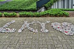 Remember Lee Kuan Yuan (chooyutshing) Tags: singapore display pebbles tribute messages duxtonplainpark rememberleekuanyew