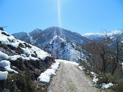 Starway to heaven (Blancaconde97) Tags: winter naturaleza snow nature nikon nieve asturias coolpix invierno l310