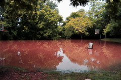 No Game Today (netaloid) Tags: nature water basketball painting spring texas flood gimp rivers brazos