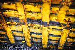 Quattordici (lyta1138) Tags: ontario rust rockwood mcleansautowreckers