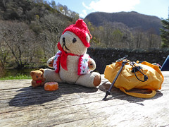 LD 5 Tue Walk Beside Derwent 9 Grange DT Picnic (g crawford) Tags: ted water danger toy picnic teddy derwent lakes lakedistrict derwentwater tt teddies keswick grange crawford dt ld tottie pastille dangerted tottieted