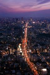 Tokyo view from Mori Tower (Davide Seddio) Tags: city japan skyline night tokyo asia roppongihills fareast eastasia moritowers