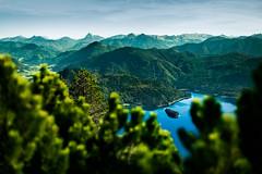 The beauty of Bavaria (pfn.photo) Tags: lake mountains alps green germany landscape island bayern deutschland bavaria see insel berge grn alpen bergsee landschaft walchensee gebirge karwendel