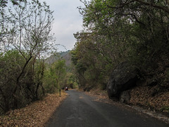 "Laguna de Apoyo <a style=""margin-left:10px; font-size:0.8em;"" href=""http://www.flickr.com/photos/127723101@N04/26157284824/"" target=""_blank"">@flickr</a>"