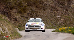 Peugeot 206 F2000/14 - Viano (tomasm06) Tags: auto sport race rally course rallye paysdegrasse peugeot206f200014