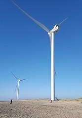 On a sunny day in Hvide Sande (Jaedde & Sis) Tags: hvidesande mills turbines two beach alone 15challengeswinner herowinner phone challengeyouwinner friendlychallenges cy2 big small tall perpetualwinner mpt550 matchpointwinner