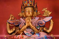 Thiksay Monastery (pallab seth) Tags: city travel panorama india mountain tourism statue landscape asia tour god goddess monastery valley idol layers leh himalayas deity thikse highaltitude gompa jammuandkashmir indusvalley thiksay thikseygompa taratemple tarashrine