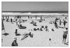 last days of summer, Sydney  #415 (lynnb's snaps) Tags: leicaiiic manly tmx100 bw beach film people street summer sydney 2016 tmax100 fomadonlqn sunbathers blackandwhite blackwhite bianconero noiretblanc monochrome schwarzweis biancoenero 黒と白 bianconegro leica analogue analog lynnburdekinphotography 35mmfilm cv35mmf25colorskopar cv35mmf25colorskoparltm voigtlandercolorskopar35mmf25ltm ©copyrightlynnburdekinallrightsreserved rangefinder barnack
