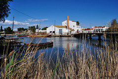 El Palmar. (Ral Marn) Tags: valencia laguna barcas elpalmar carrizos laalbufera